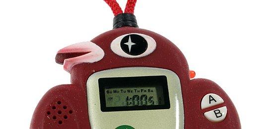 Posture Alarm device