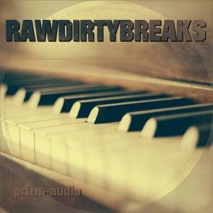 Prizm Audio Raw Dirty Breaks