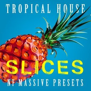 ADSR Slices Tropical House for Massive