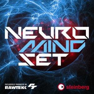 Steinberg Neuro Mindset