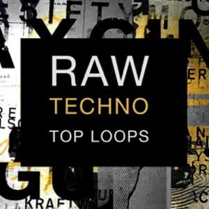 SPF Samplers Raw Techno Top Loops