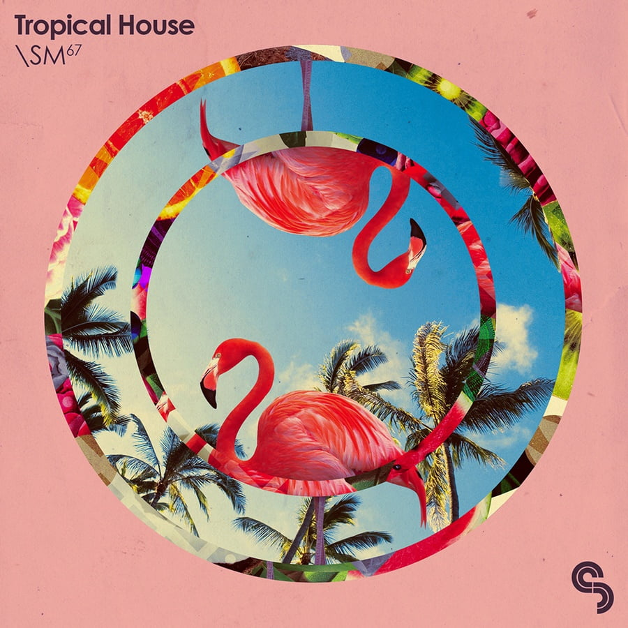 Tropical house sample pack by sample magic for Classic house sample pack