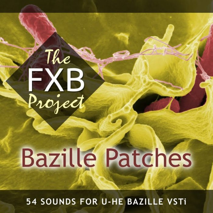 The FXB Project Bazille Patches