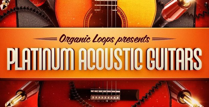 Organic Loops Platinum Acoustic Guitar