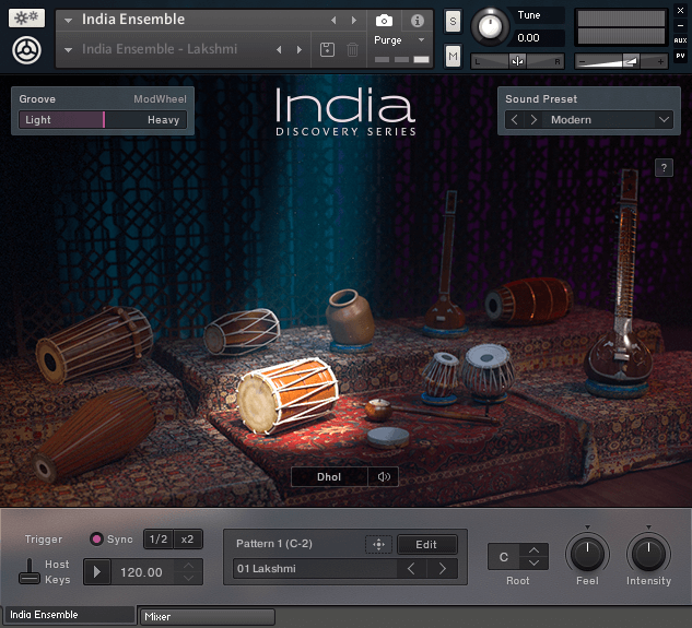 NI_India_Ensemble-Instr-Selected