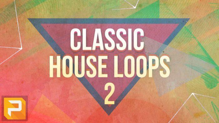 Pakotek Classic House Loops Vol 2
