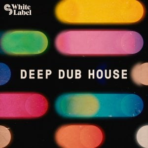 Sample Magic Deep Dub House
