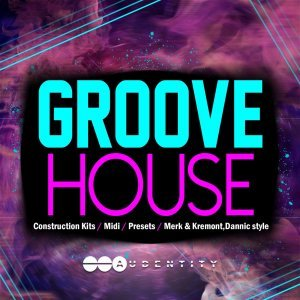 Audentity Groove House