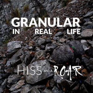 HISS and a ROAR Granular In Real Life