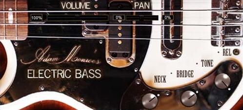 Adam Monroe's Electric Bass
