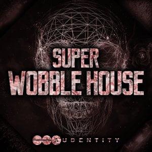 Audentity Super Wobble House