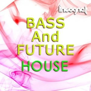 Incognet Bass And Future House