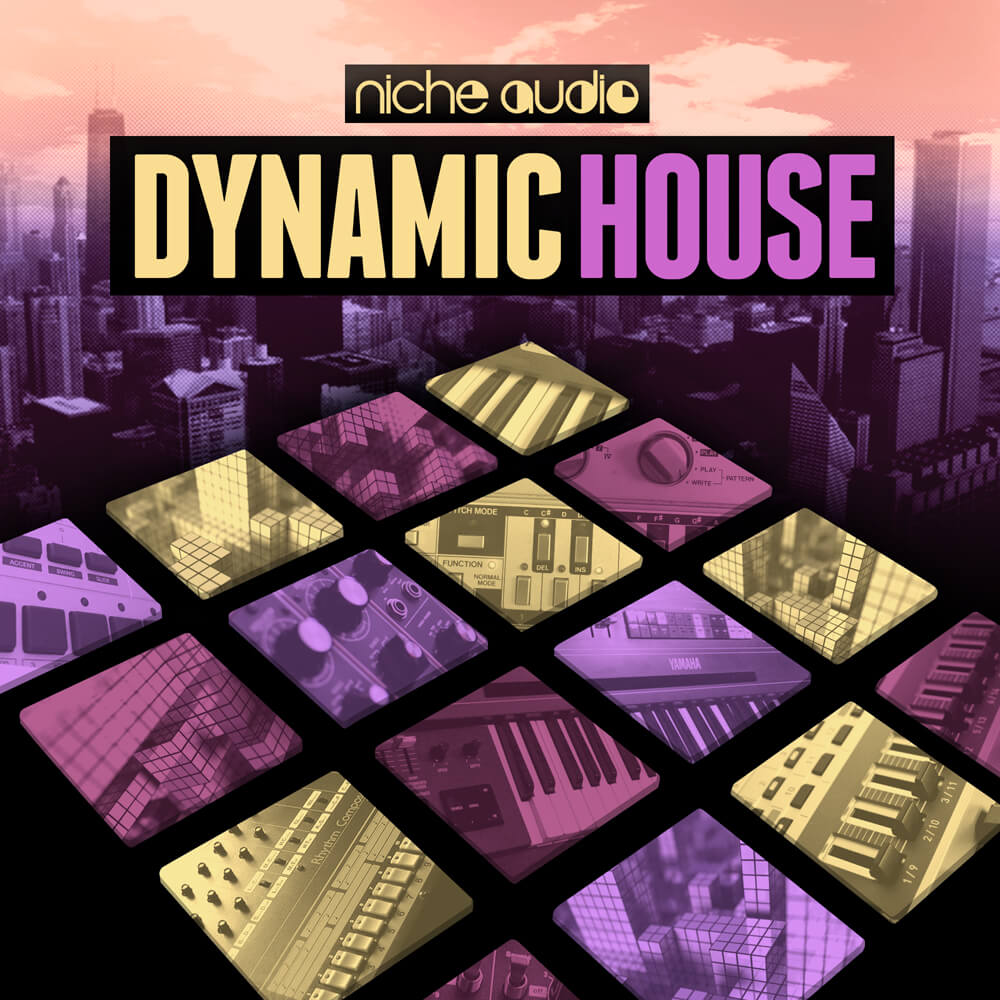 Dynamic house by niche audio for ableton maschine for Dynamic house