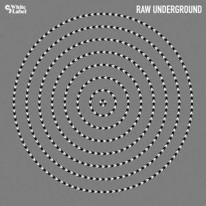 Sample Magic Raw Underground