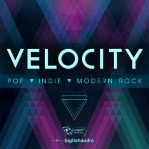 big-fish-audio-velocity