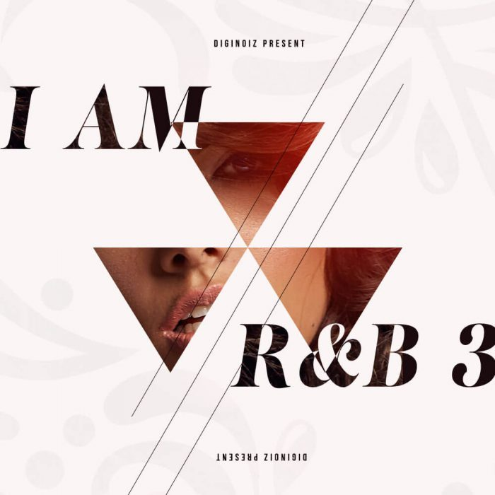 Diginoiz I Am RnB 3