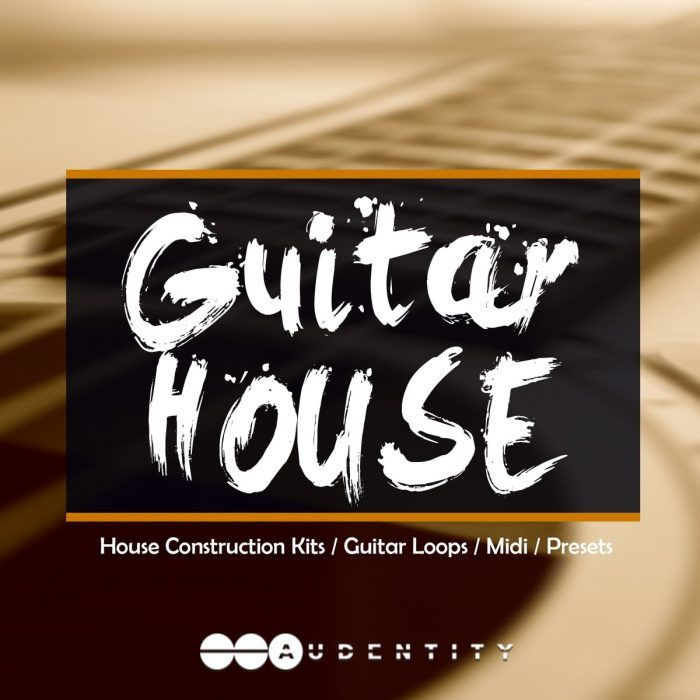 Audentity Records Guitar House