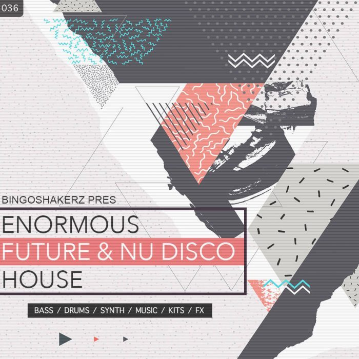 Bingoshakerz Enormous Future & Nu Disco House