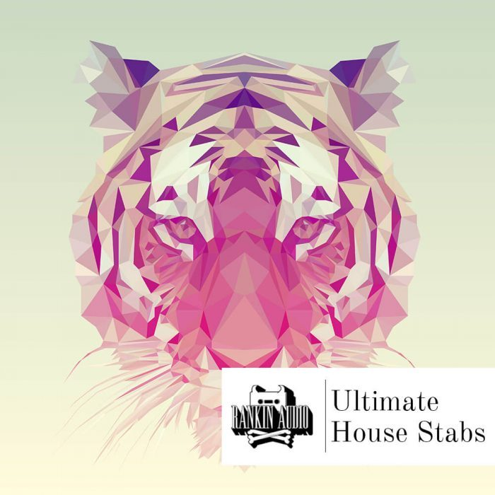 Rankin Audio Ultimate House Stabs