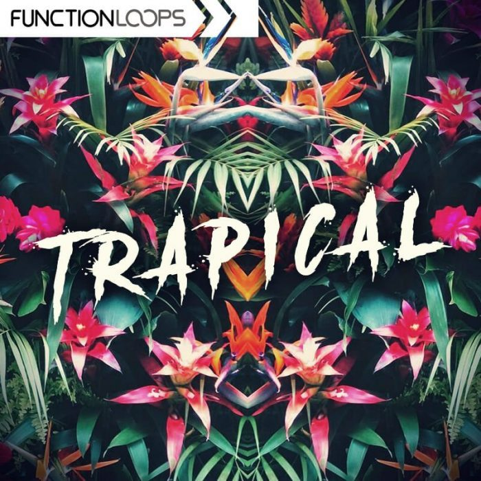 Function Loops Trapical