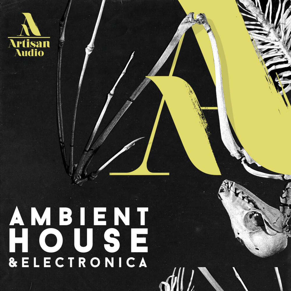 Artisan audio ambient house electronica at loopmasters for Ambient house