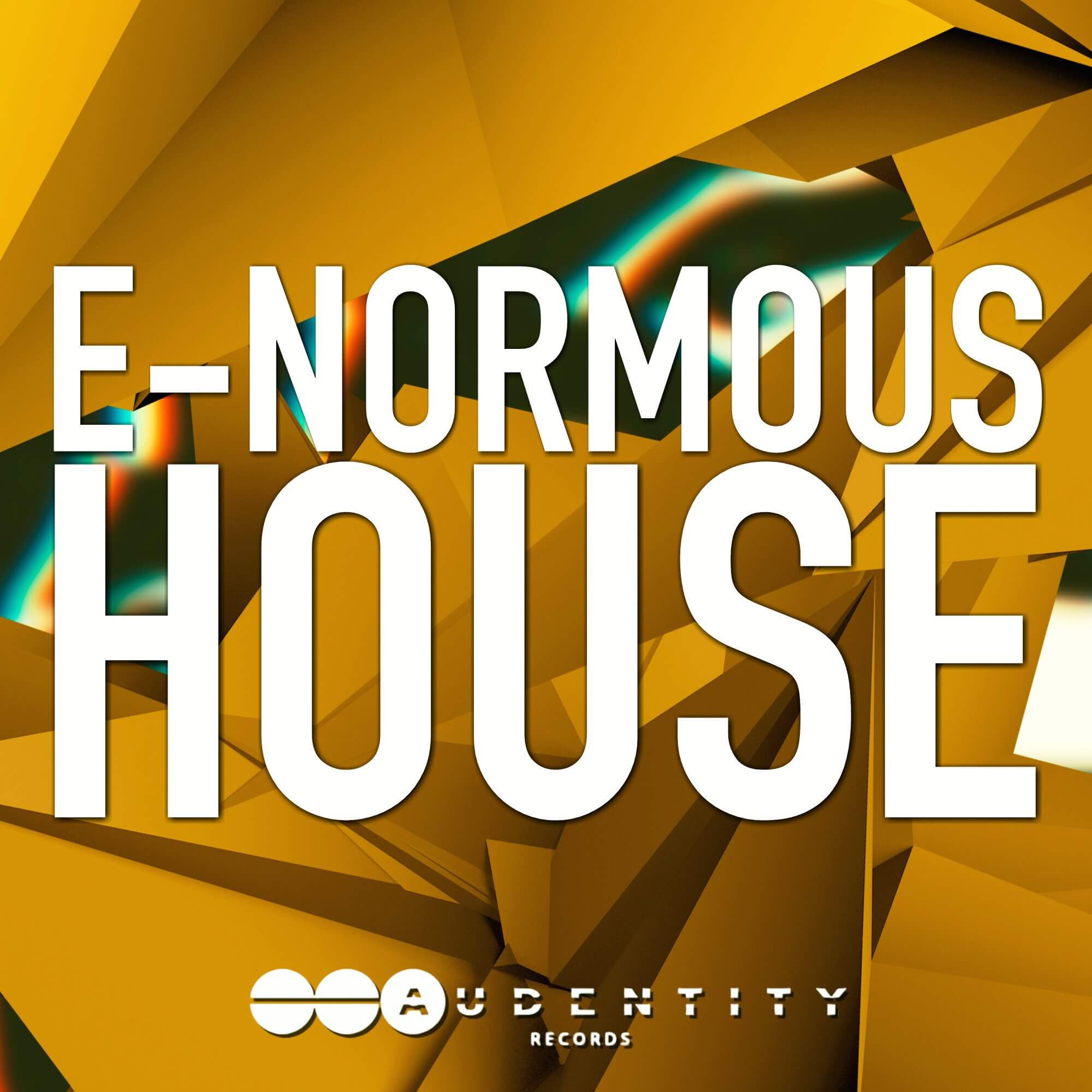 E Normous House Sample Pack By Audentity Records Released