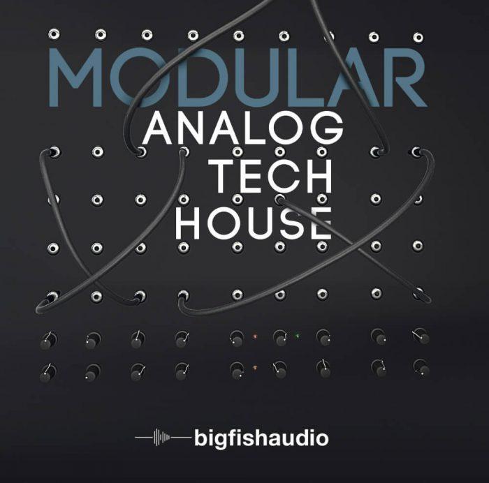 Big Fish Audio Modular Analog Tech House