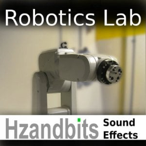 Hzandbits Robotics Lab