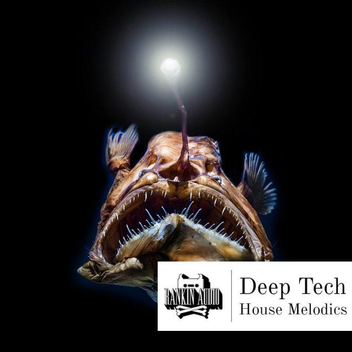 Rankin Audio Deep Tech House Melodics
