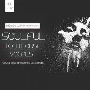 Bingoshakerz Soulful & Tech House Vocals