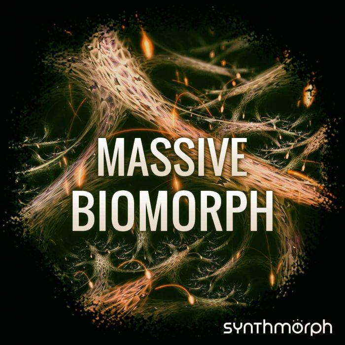 Synthmorph Massive Biomorph