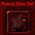 Dover Audio Rasberry Filter Pad