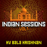 Loopmasters Indian Sessions Vol. 1 - KV Bala Krishnan