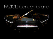 Imperfect Samples Fazioli Ebony Concert Grand