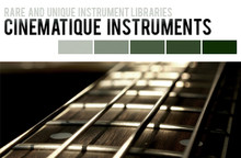 Cinematique Instruments Bowed Guitars