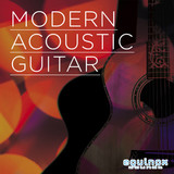 Equinox Sounds Modern Acoustic Guitar