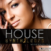 Roqstar Entertainment House Synth Loops Vol 2