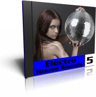 Wildfunk Electro House Sounds 5