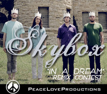 Peace Love Productions Skybox Remix Contest