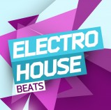 Sounds To Sample Electro House Beats