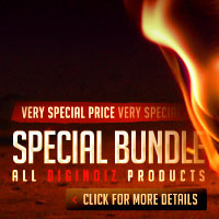 Diginoiz Special Bundle