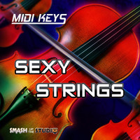 Smash Up The Studio Sexy Strings
