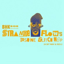 BHK Samples StrangeFlow Insane Glitch Hop