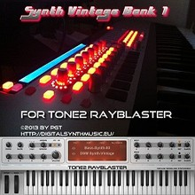 DSM Synth Vintage Bank 1 for RayBlaster
