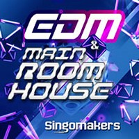 Singomakers EDM & Main Room House