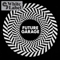 Sample Magic Future Garage