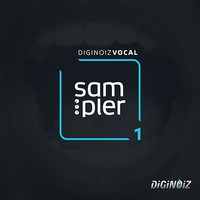 Diginoiz Vocal Sampler