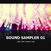 DNR Sound Sampler 01