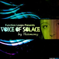 Function Loops Voice Of Solace