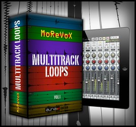 Morevox Multitrack Loops Vol 1